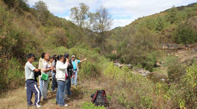 """Vom """"rückständigen Indio"""" zum wachsamen Hoffnungsträger? Auf der Suche nach einem Weg aus der Umweltkrise in Mexiko"""